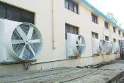 速吉牌太仓负压风机厂家报价和嵊州负压风机多少钱一台