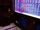 武汉鱼缸制作厂家拟生态鱼缸定制