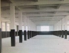 庙前地 标准厂房 700平米