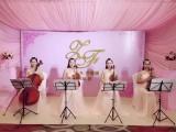 深圳各类表演节目服装出租 乐器 灯光音响 舞台搭建 婚礼策划