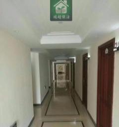 承接写字楼、酒店、商场、办公楼地毯清洗开荒保洁