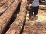 铁杉木方价格,防腐耐磨,价格优惠