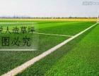 衡阳专业足球场施工造价_人造草坪厂家