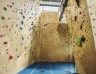 深圳攀岩厂家,攀岩设备,室内攀岩