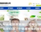 湛江专业网站建设,送688元黑紫砂茶具及电器一套!