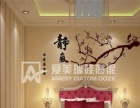 爱美瑞硅藻泥中国硅藻泥十大品牌
