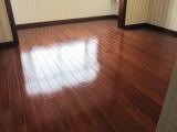 杭州綠捷專業上門辦公室酒店會議室地毯清洗 地板打蠟