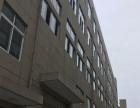 出租郑楼标准厂房、六楼1300平米