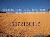 旺川求购玉米 大豆 高粮 豆粕