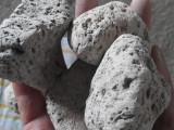 厂家批发灰白色浮石 水浮石 磨料浮石 种植栽培浮石