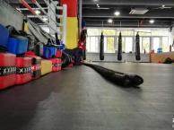 散打 泰拳 巴西柔术 女子防身术 体院专业培训搏击
