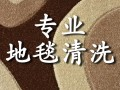 杭州高品质专业地毯清洗 杀菌 养护欢迎咨询