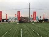 蚌埠提供专业锦旗横幅多类型模板制作
