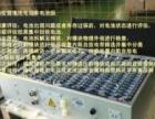 国收购销售锂电池磷酸铁锂聚合物钛酸锂电池电子芯片