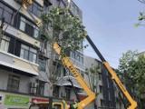 鄂州园林绿化高空作业车出租租赁