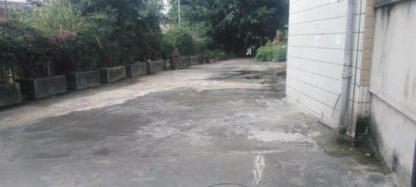 布吉 木棉湾 教育新村