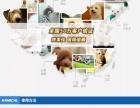 犬猫用沐浴露改善皮肤病