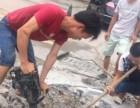 台州疏通厕所 清理化粪池 高压清理等管道疏通