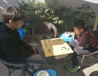名师一对一围棋体验课