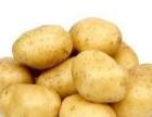 惠州宏泰发蔬菜有限公司,服务**的农副产品配送
