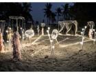 儋州那大婚庆策划 开业策划 活动策划 摄影摄像