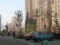 中海国际社区,精装修,送车位,地下室,楼层高,采光好,视野棒