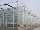 山东全新温室大棚 玻璃温室建设