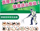 东莞白蚁防治 杀虫灭鼠 专业资质认证 技术精湛