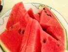 武汉自驾游套餐推荐 武汉开心果园采摘西瓜