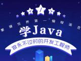 一对一培训在校大学生Java开发工程师