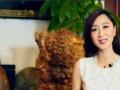 BTV电视台专业团队制作企业宣传片,视频拍摄制作