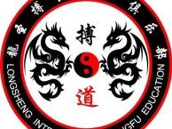 暑假班少儿体能培训散打搏击跆拳道