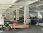 虎门金洲推出500平方米带牛角一楼厂房招租