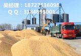 哪里有大量收购玉米的?湖北民发大量收购玉米实力厂家