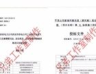 专业制作标书(制作各种投标文件)