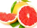 如何通过投资智可优果水果收益