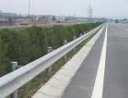 成都高速路口防撞护栏双波镀锌波形护栏