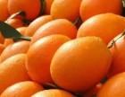 鲜果汇怎么样?大连有鲜果汇吗?