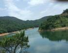 阳江市800亩生态水库农场