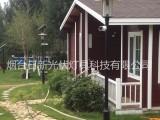 烟台日新太阳能路灯太阳能庭院灯公园小区太阳能景观灯