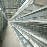 河南金兴养殖设备出售各种鸡笼