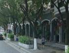 文灶BRT旁店面48平高6.3米245万