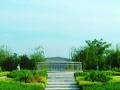 风水宝地齐孝陵-纳入淄博市公墓规划的较大陵园