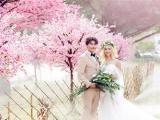 网红个性潮拍婚纱摄影