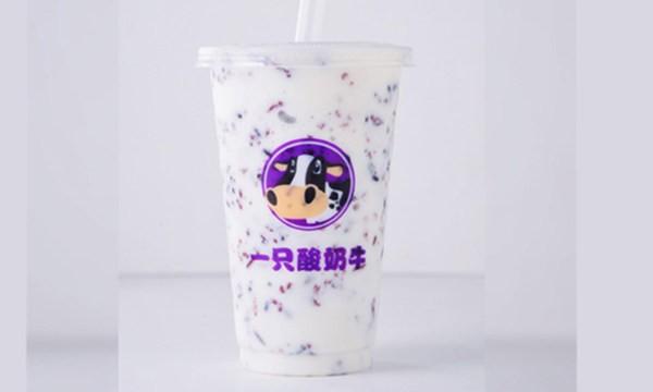 一只酸牛奶加盟 一只酸奶牛加盟费多少 酸奶+小吃+冰淇淋