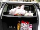 福特翼搏2013款 1.5 手动 舒适型车况精品无事故支持分期零