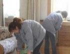 鹿城区日常保洁 玻璃清洗 租房打扫家庭大扫除等服务