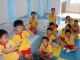 成都武侯少儿拼音识字,思维能力培训,阅读培训班
