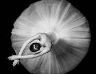 暑假成人古典舞民族舞培训班招生中