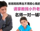 小学英语数学语文一对一家教在职教师,考点把握准确